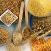 A importância dos cereais